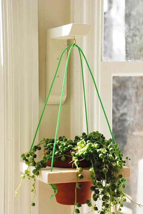 Un soporte para colgar plantas bueno bonito y barato - Macetas para colgar ...